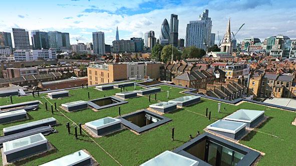 Britannia Green Roof