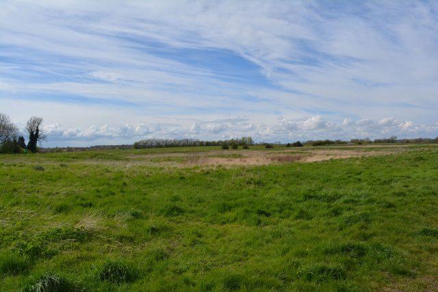 Bury Field, Newport Pagnell