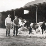 Brian-with-an-Ayrshire-bull