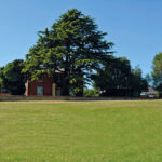 The-museum-today—the-farmhouse-in-the-shadow-of-the-magnificent-Cedar-tree
