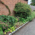 Gorgeous-greenery-and-blooms-has-replaced-the-mud-and-brambles