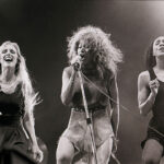 Tina-Turner-live-at-Woburn-Abbey-pic-Jane-Russell