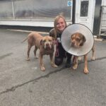 On the road to recovery – Lola and Zena with Beki
